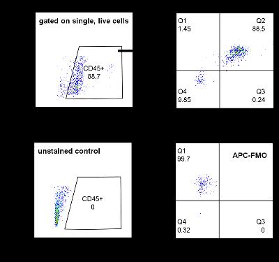 Flow Cytometry - Anti-P2Y12 antibody - Extracellular domain (ab188968)
