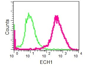 Flow Cytometry - Anti-ECH1 antibody [EPR15449(B)] - C-terminal (ab189255)