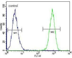 Flow Cytometry - Anti-TAF4B antibody - C-terminal (ab189428)