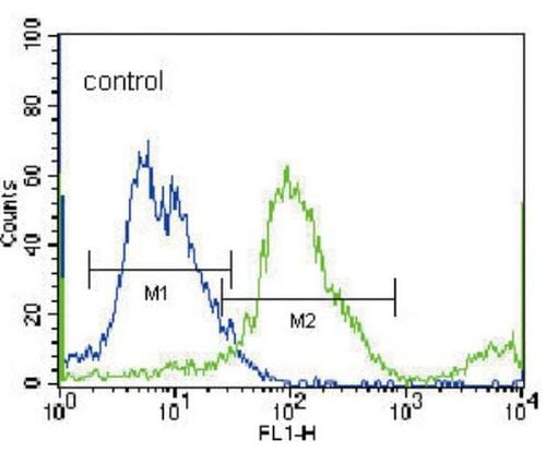Flow Cytometry - Anti-SLC36A1 antibody - N-terminal (ab189441)