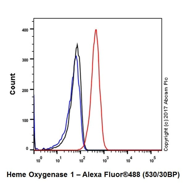 Flow Cytometry - Anti-Heme Oxygenase 1 antibody [EPR18161-128] (ab189491)