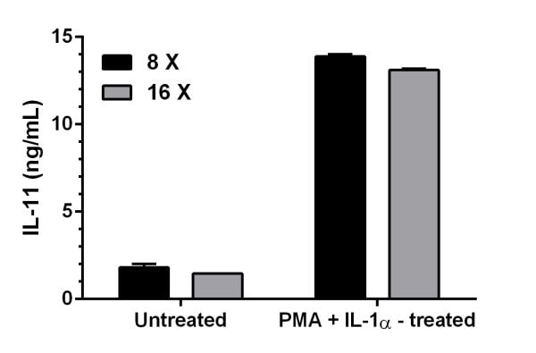 Comparison of IL-11 concentrations in untreated and PMA + IL-1 alpha - treated MRC5 supernatants.