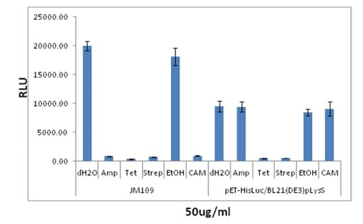 Evaluating the growth inhibition of bacteria by antibiotic reagents.