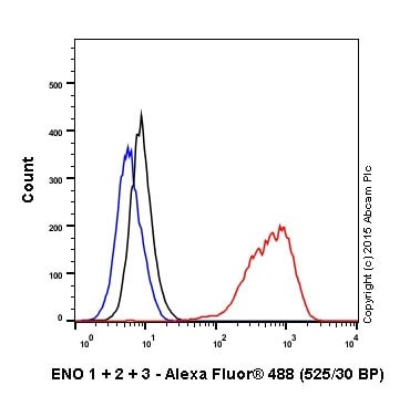 Flow Cytometry - Anti-ENO1 + ENO2 + ENO3 antibody [EPR18407] (ab189891)
