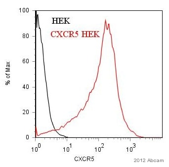 Flow Cytometry - Anti-CXCR5 antibody (ab19017)