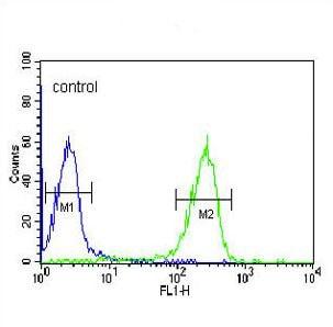 Flow Cytometry - Anti-FKBP11 antibody - N-terminal (ab190101)