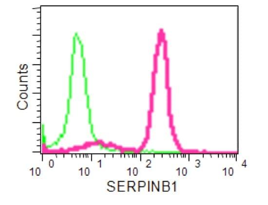 Flow Cytometry - Anti-SERPINB1/PI2 antibody [EPR13299] - Membrane Vesicle Marker (ab190357)