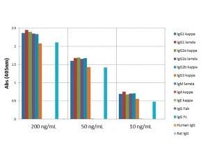 ELISA - Anti-Mouse IgG antibody [RM104] (ab190475)