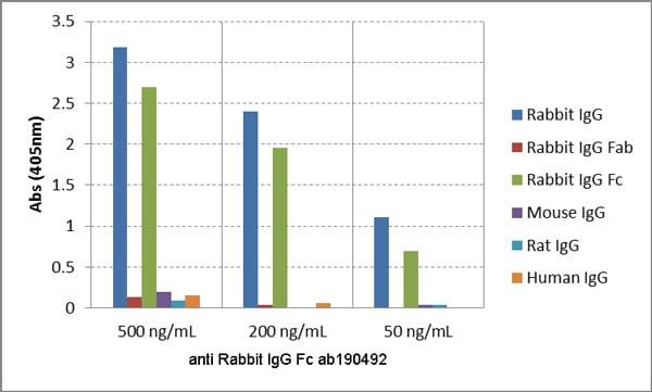 ELISA - Anti-Rabbit IgG Fc antibody [RMG02] (ab190492)