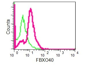 Flow Cytometry (Intracellular) - Anti-FBXO40 antibody [EPR15005] (ab190688)