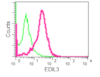 Flow Cytometry (Intracellular) - Anti-EDIL3/DEL1 antibody [EPR12451] (ab190692)