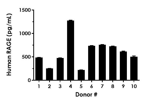 RAGE concentrations in individual Human serum donors.