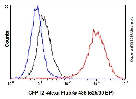 Flow Cytometry - Anti-GFPT2 antibody [EPR19095] (ab190966)