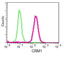 Flow Cytometry - Anti-CRM1 [EPR14124] antibody - C-terminal (ab191081)