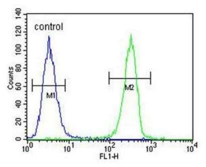 Flow Cytometry - Anti-HOXA9 antibody - C-terminal (ab191178)