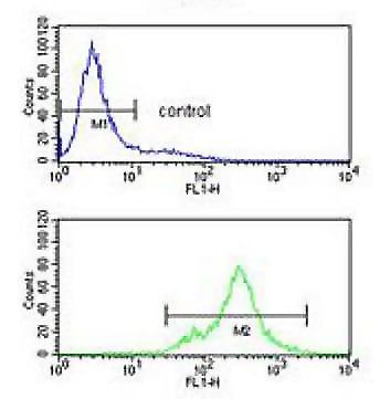 Flow Cytometry - Anti-SPRED1 antibody (ab191278)