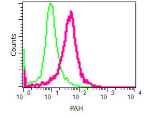 Flow Cytometry - Anti-PAH antibody [EPR12381] - C-terminal (ab191415)