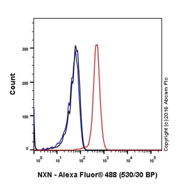 Flow Cytometry - Anti-NXN/NRX antibody [EPR15177] (ab191429)