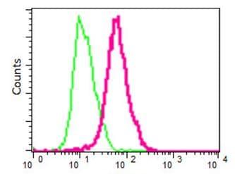 Flow Cytometry - Anti-IMPA1 [EPR15405] antibody (ab191570)