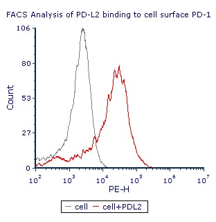 Flow Cytometry - Recombinant human PD-L2 protein (ab191645)