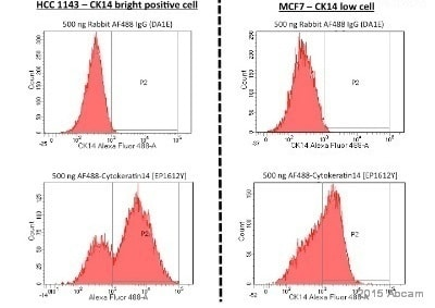 Flow Cytometry - Alexa Fluor® 488 Anti-Cytokeratin 14 antibody [EP1612Y] (ab192055)