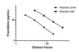 Interpolated concentrations of Fractalkine in Human urine and milk.