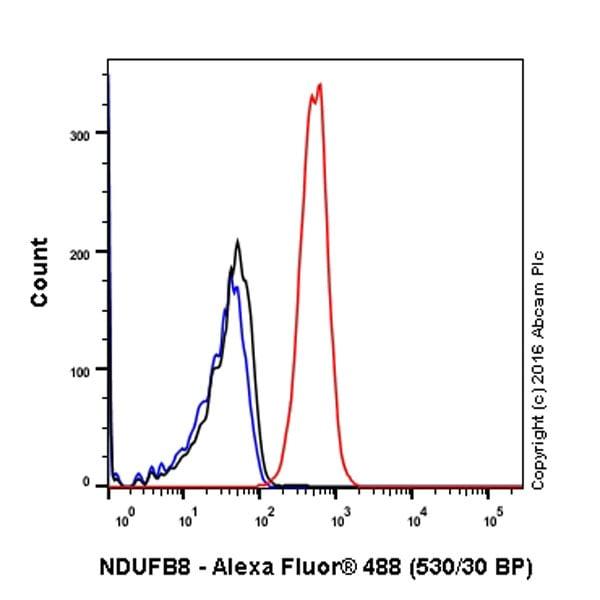Flow Cytometry - Anti-NDUFB8 antibody [EPR15961] (ab192878)