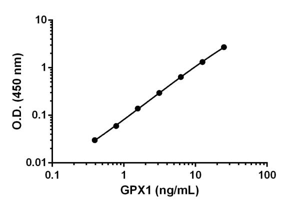 Example of Glutathione Peroxidase 1 standard curve.