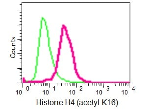 Flow Cytometry - Anti-Histone H4 (acetyl K16) antibody [EPR1004] - BSA and Azide free (ab194352)