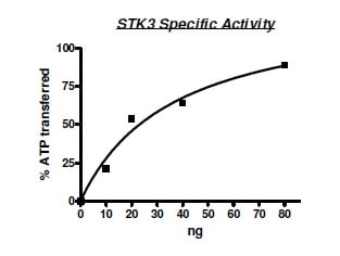 Functional Studies - Recombinant human STK3/MST-2 protein (ab195160)