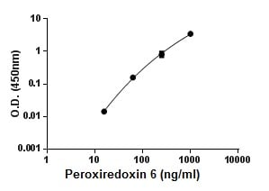 ELISA - Recombinant Mouse Peroxiredoxin 6 protein (ab195174)