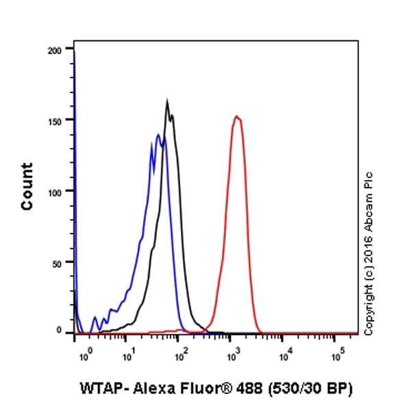 Flow Cytometry - Anti-WTAP antibody [EPR18744] (ab195380)