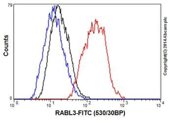 Flow Cytometry - Anti-RABL3 antibody [EPR16709] - C-terminal (ab196024)