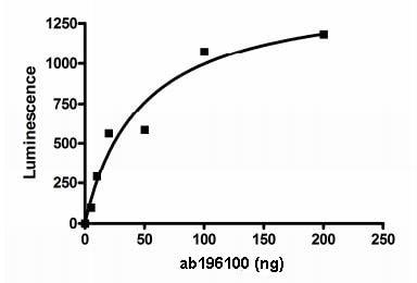 Functional Studies - Recombinant human PKLR protein (ab196100)