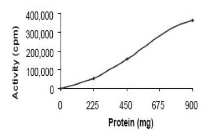Functional Studies - Recombinant human Cyclin E1 + Cdk3 protein (Active) (ab196131)