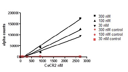 Functional Studies - Recombinant human CECR2 protein (Active) (ab196136)