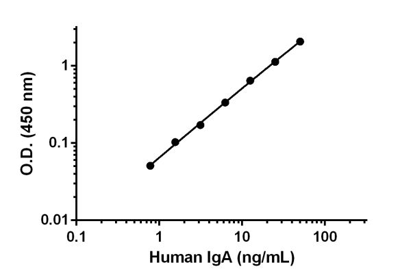 Example of Human IgA standard curve in Sample Diluent NS.