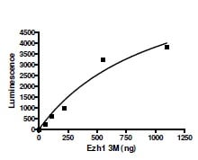 Functional Studies - Recombinant human EZH1 + EED + SUZ12 protein (ab196395)
