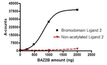 Functional Studies - Recombinant human BAZ2B protein (ab196402)