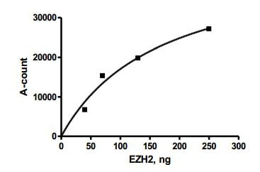 Functional Studies - Recombinant human EZH2 + EED + SUZ12 protein (ab196409)