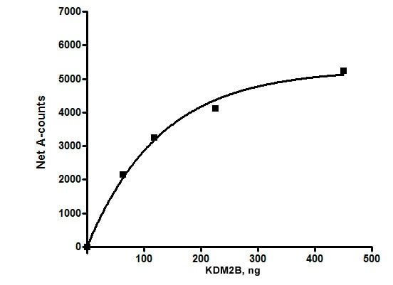 Functional Studies - Recombinant human KDM2B protein (ab196435)