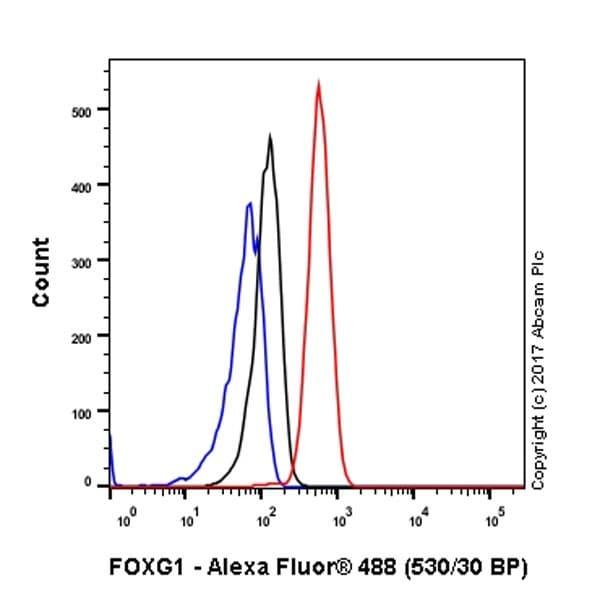 Flow Cytometry - Anti-FOXG1 antibody [EPR18987] (ab196868)
