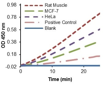 Functional Studies - Triosephosphate Isomerase Activity Assay Kit (Colorimetric) (ab197001)