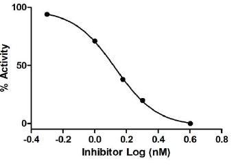 Thrombin Inhibitor Screening Assay Kit (Fluorometric) (ab197007)