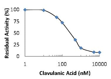 Inhibition of Beta-Lactamase Enzyme Activity