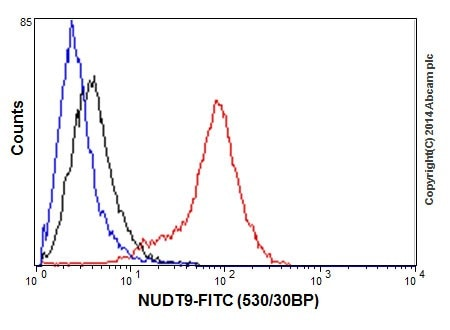 Flow Cytometry - Anti-NUDT9 antibody [EPR15175] (ab197021)
