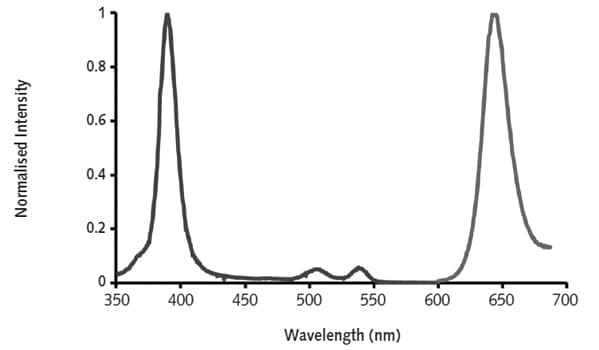 Excitation and emission spectra of O2 probe