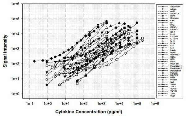 Human Obesity Antibody Array - Quantitative (40 targets) (ab197417) Standard Curve