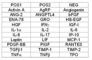 Human Angiogenesis Antibody Array A - Quantitative (30 Targets) (ab197420)