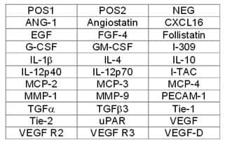 Human Angiogenesis Antibody Array B - Quantitative (30 Targets) (ab197421)